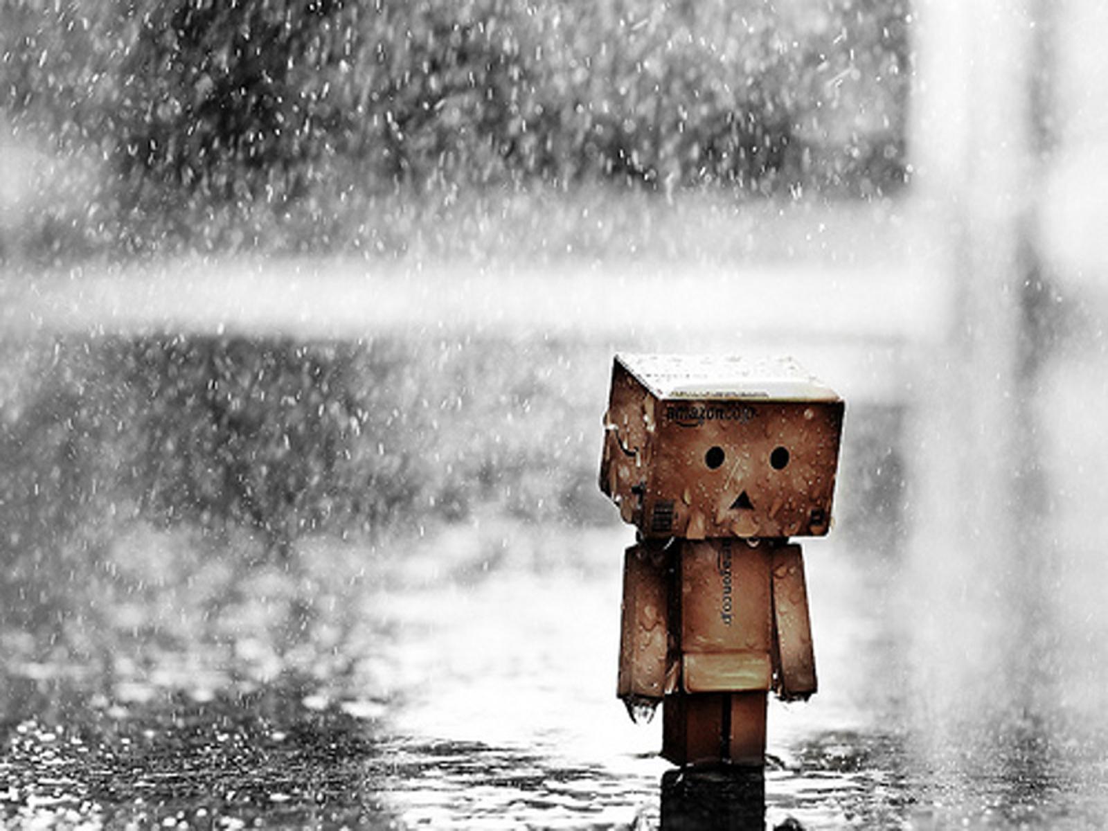 danboard_boxman_kutu_adam_rain
