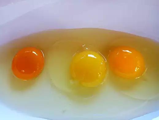 猜猜這三顆蛋中,哪一顆才是來自健康的雞嗎?