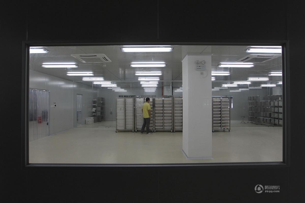 探秘世界最大蚊子工廠:每週產50萬絕育蚊子送各地