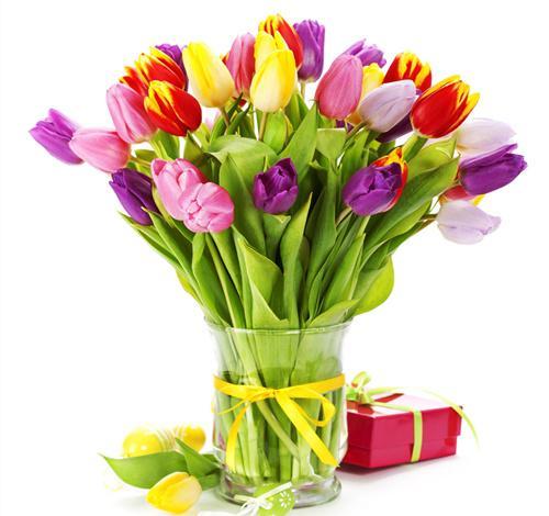 千萬別往家裡放這些花,否則出了事都不知道!